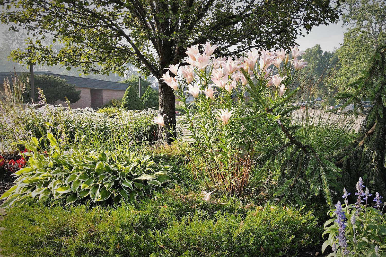 Brookcrest Garden