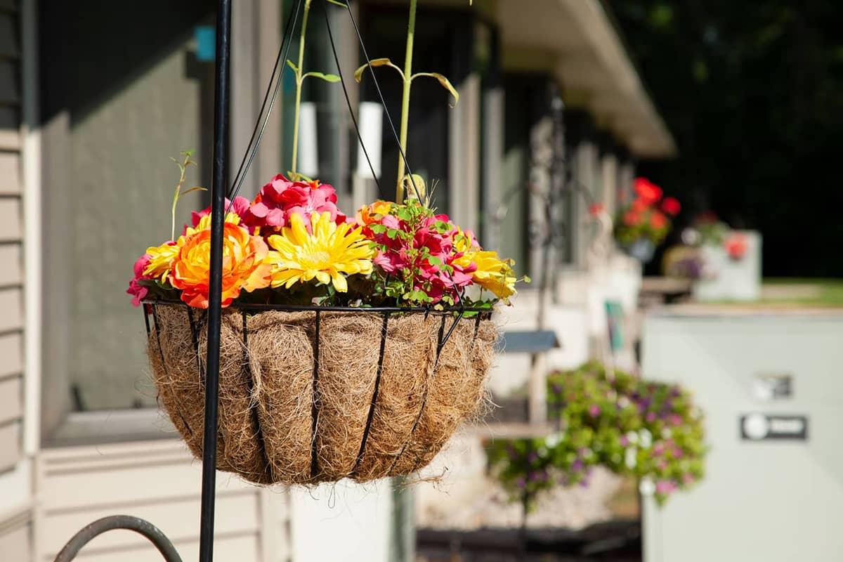 Rose Garden hanging flower basket